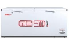 星星BD/BC-718G 718升 卧式冷柜 冷柜 冰柜 大冰柜 商用保鲜冷藏冷冻转换柜 机械控温