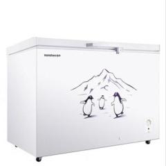 容聲 249立升冷柜  BD/BC-249MX